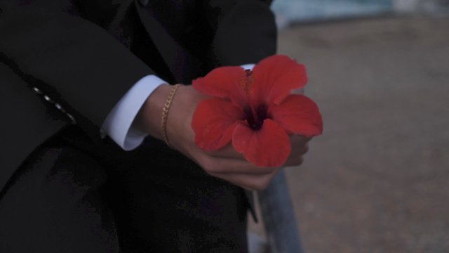 A Man Keeps a Red Flower in His Hands thumbnail