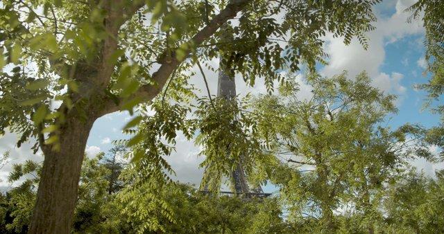 Eiffel Tower behind Green Trees thumbnail